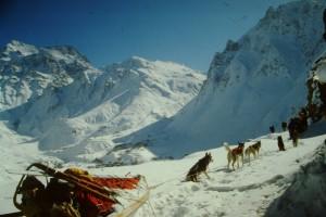 Mit Schlittenhunden im Himalaya Massiv